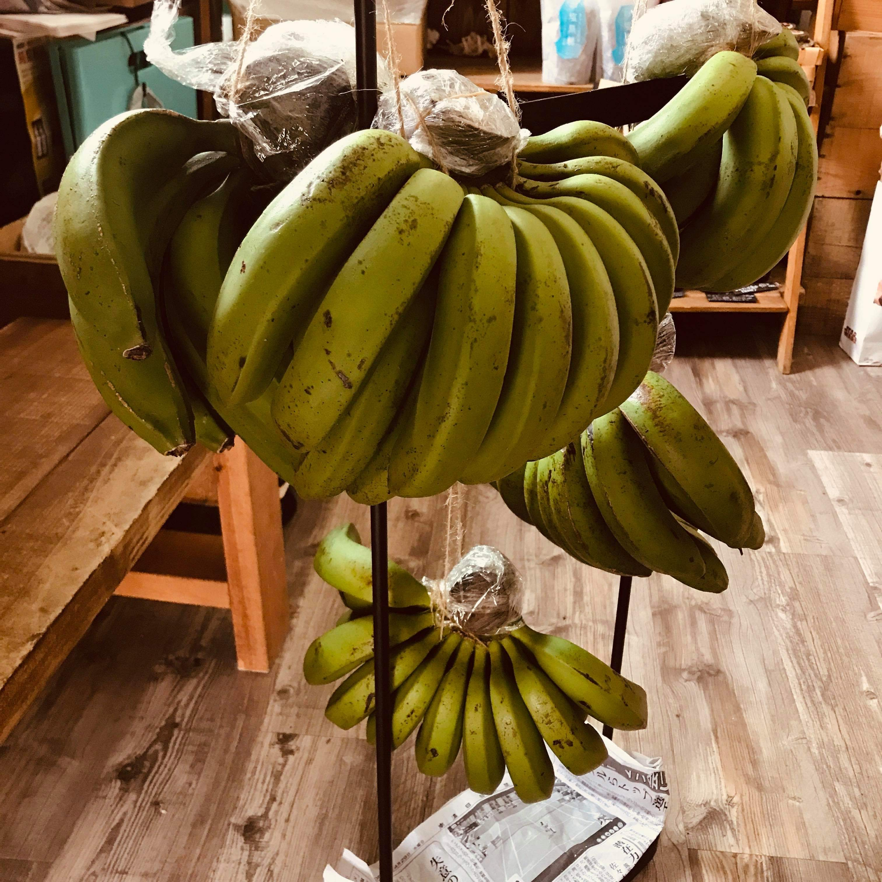 島バナナ/3尺バナナ